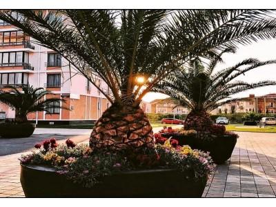 Отель «Gamma Sirius Park»  территория, внешний вид
